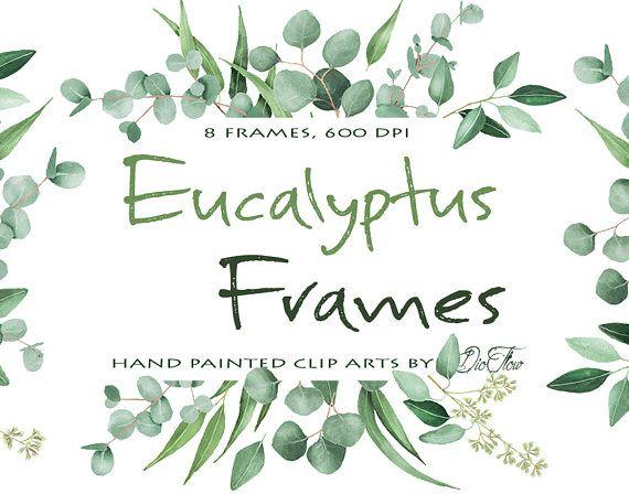 c2470b2b0c37 Watercolor Eucalyptus Clipart Frame Greenery Frames Clip Art Eucalyptus  Greenery Baby Silver Dollar Leaf Green Leaves Illustration Vector