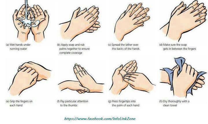 Hand Washing Directions Hand Washing Hand Hygiene