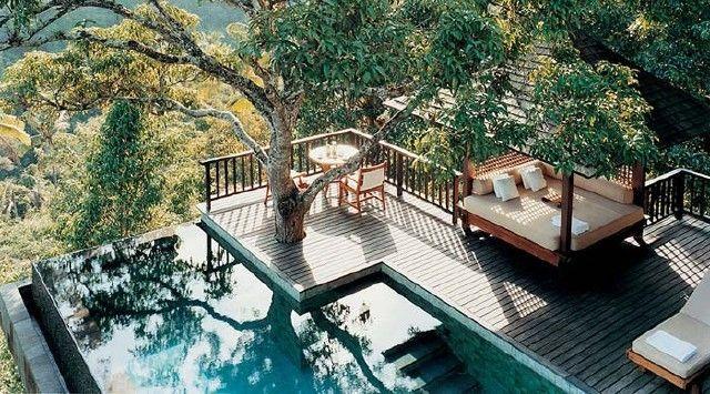 Baum Für Den Garten Modern Lounge Möbel
