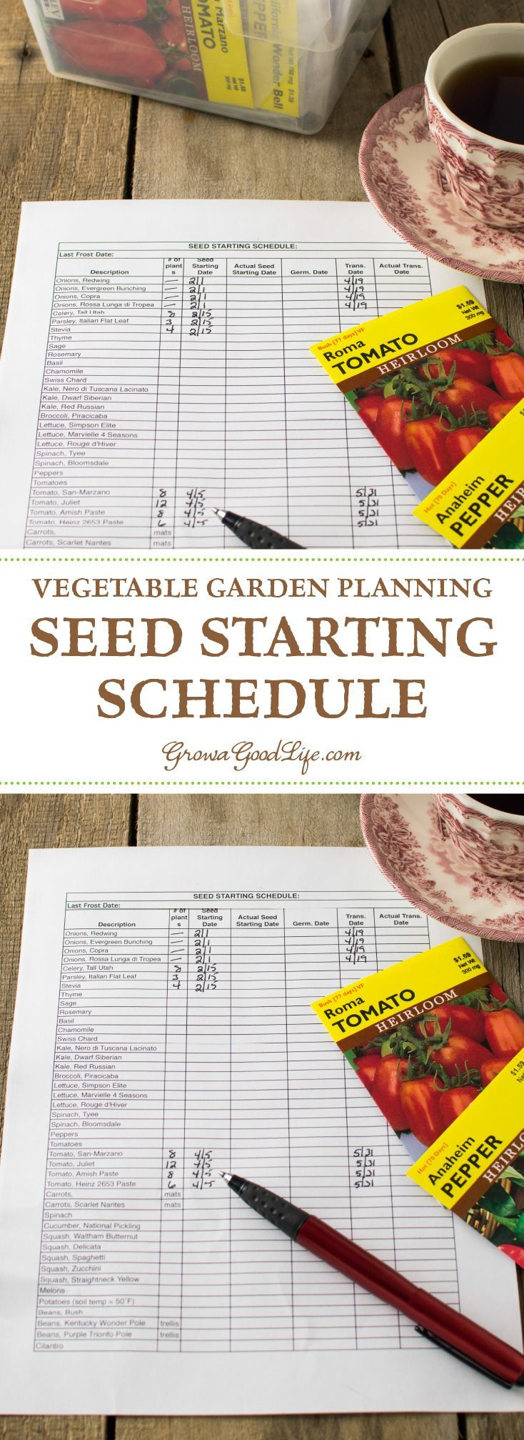 Planning Your Vegetable Garden: Seed Starting Schedule -  Developing a seed-starting schedule ahead of time makes it easy to know which seeds you should be s - #CompanionPlanting #garden #OrganicGardening #Permaculture #planning #schedule #Seed #SeedStarting #starting #vegetable
