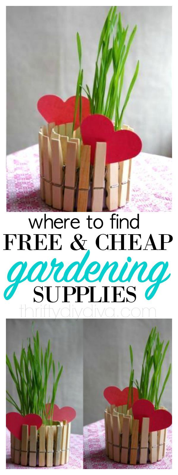 5 Free and Cheap Gardening Supplies Gardens Tips and Budget