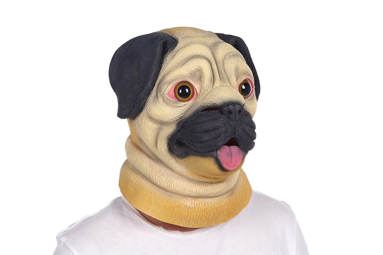 Pin on Pet Shop