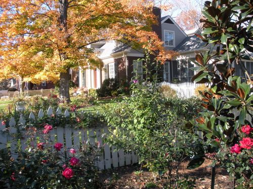 California Bungalow Victoria S Colonial Bungalow Fling: Justin Stelter Landscape Gardening
