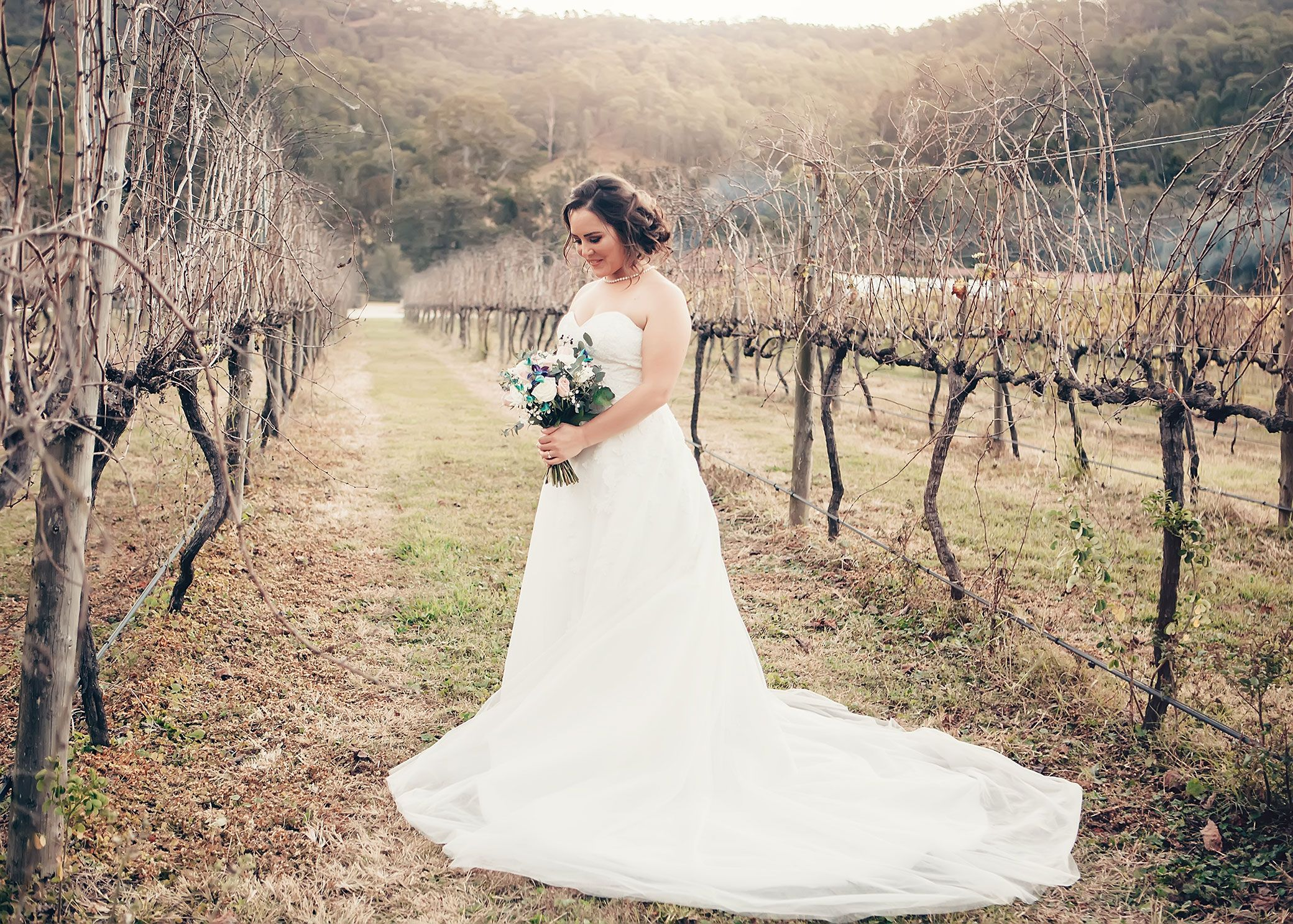 Canungra Valley Vineyard Wedding Great Location For A Wedding And The Venue Has Accommodation For Guests To Vineyard Wedding Wedding Strapless Wedding Dress
