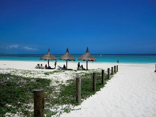 Hotel Is Wonderful Review Of Amarte Hotel Tripadvisor Playa Maroma Trip Advisor Hotel