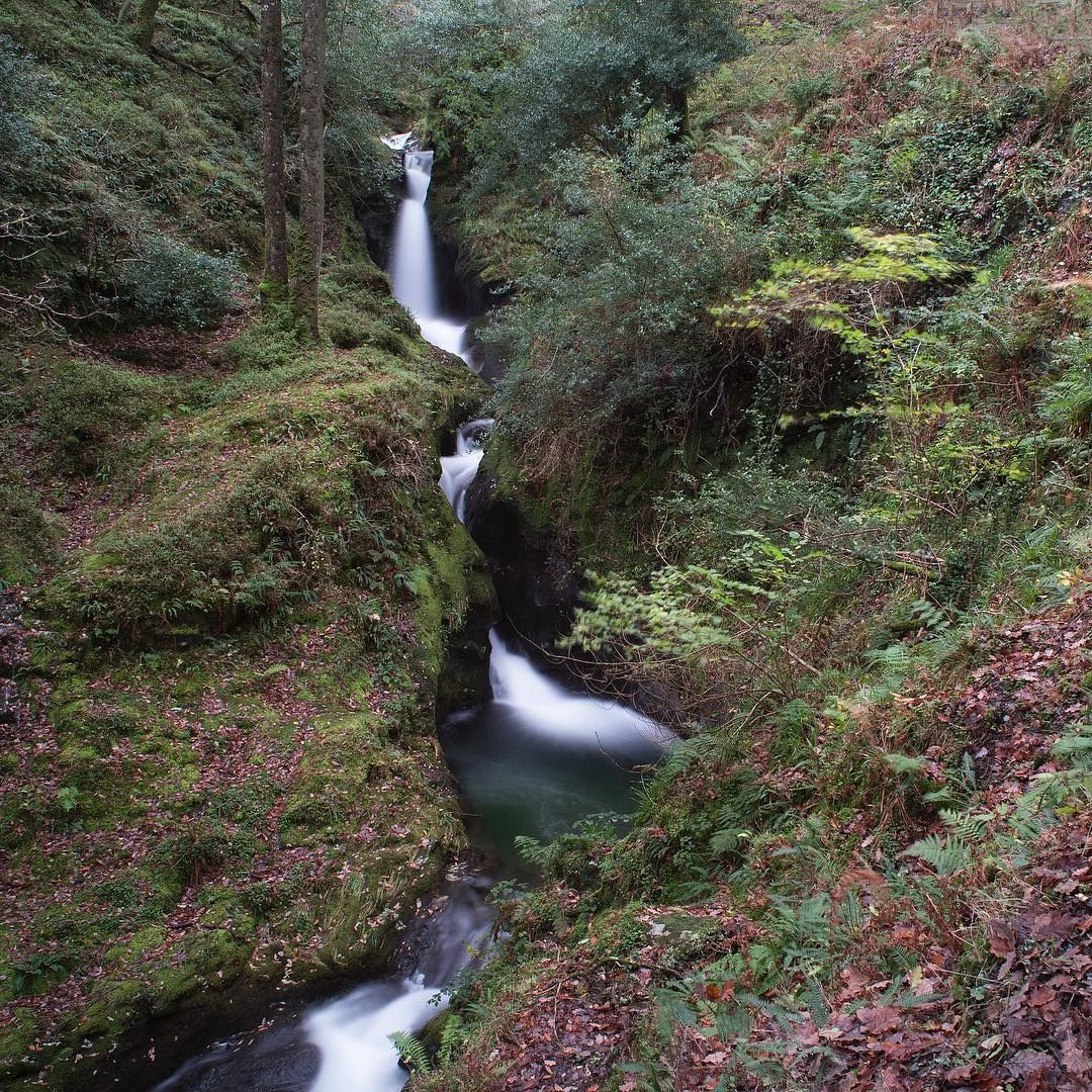 Poulanass Waterfall #waterfall #wicklow #ireland #nature #outdoors #wanderingshane