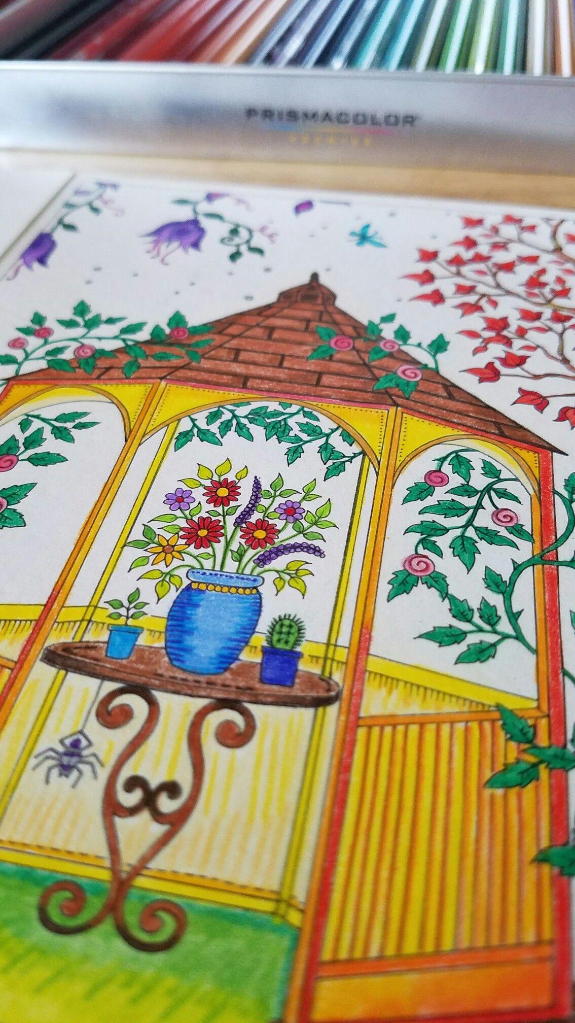 Johanna Basford Secret Garden Postcard GardenWatercolor PencilsSecret GardensColoring BooksZentangleMarkers PostcardsDoodles