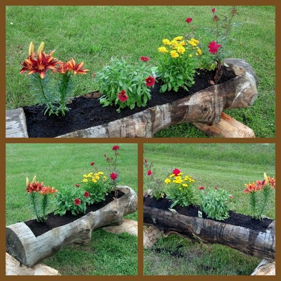 Diy Flower Gardening Ideas And Planter Projects: DIY Planter. Made Out Of An Old Log. Thanks To My Hubby