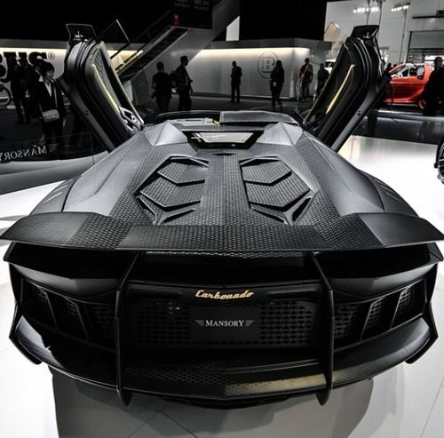 import-models:  Mansory Carbonado LP1250 Roadster Credit: Willem de Zeeuw