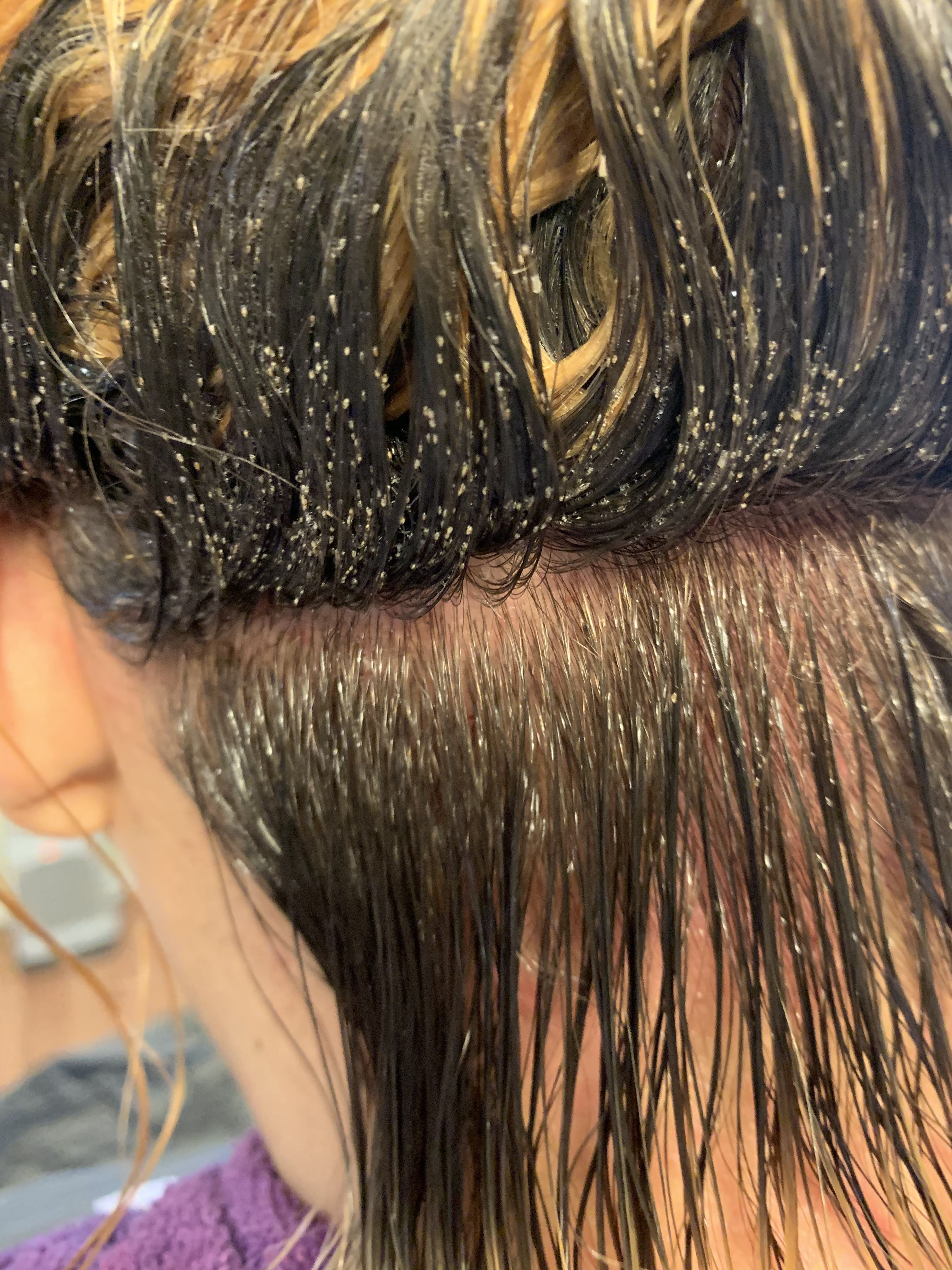 Months Of Lice Hair Styles Hair Beauty