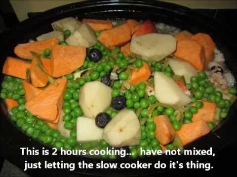 Slow Cooker Homemade Dog Food Chicken Ground Turkey Veggies