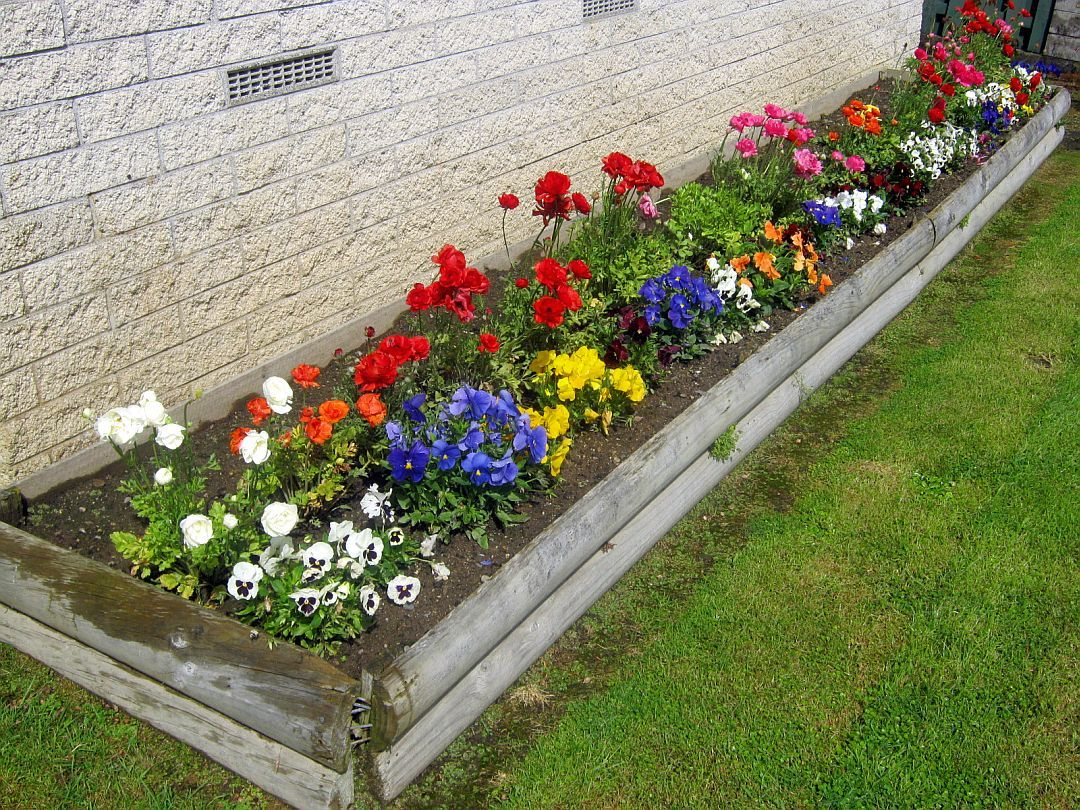 Landscaping flowers in front of house google search for Flower bed in front of house