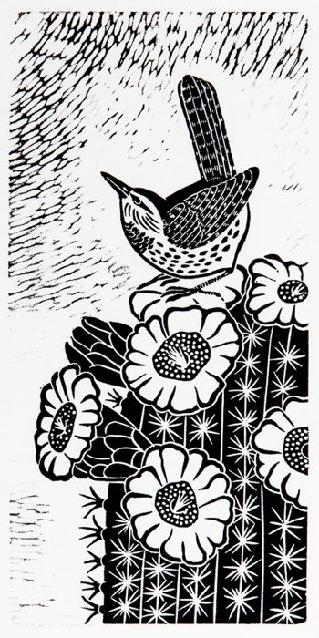 Cactus Wren by Donna Reed | birds of a feather... | Pinterest