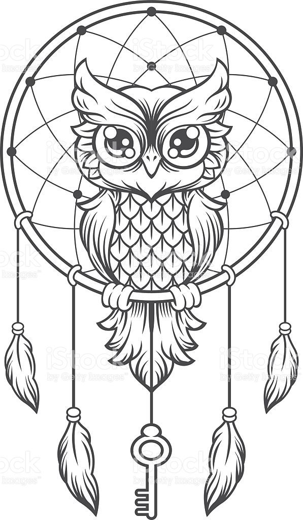 Dream Catcher Black And White Owl Vector Line Illustration Adult