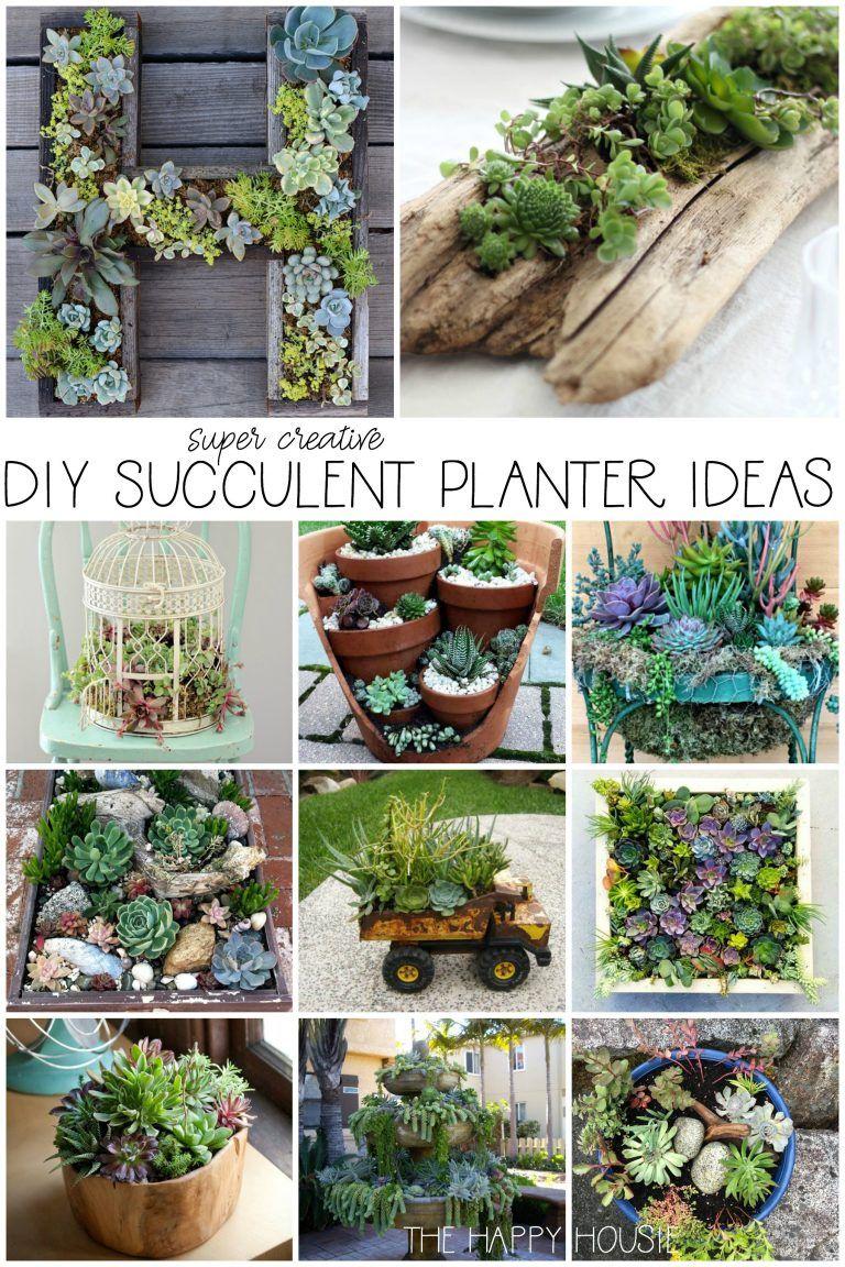 DIY Succulent Planter Ideas | The Happy Housie #plantingsucculents