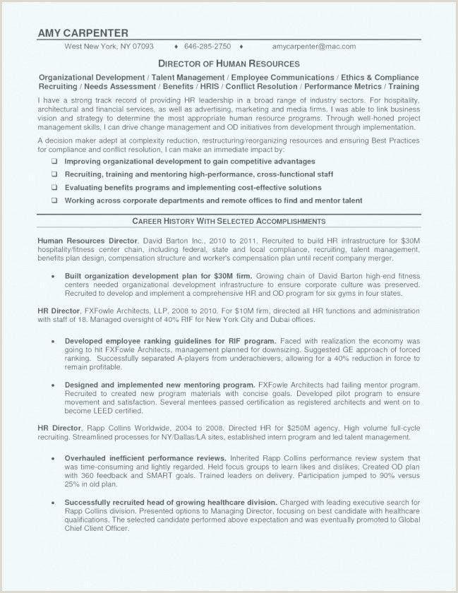 Professional Curriculum Vitae Samples Doc in 2020 Resume