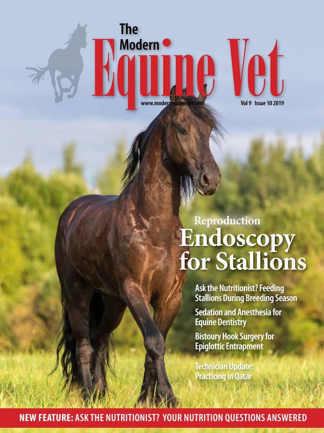 The Modern Equine Vet October 2019 Equines Vets Sedation