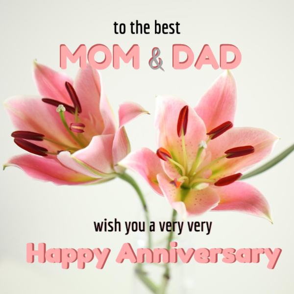 Wedding Anniversary Wishes (+Images) for Your Parents in