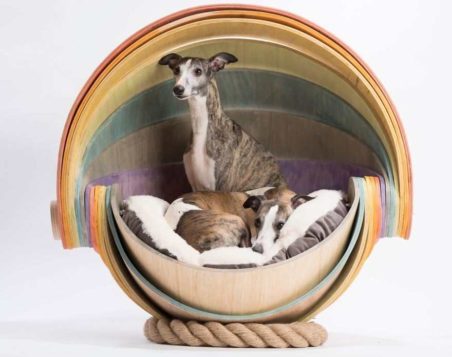 Architects Around The World Design Unique Dog Houses And