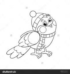 Image Result For Winter Bird Coloring Pages Bird Coloring Pages