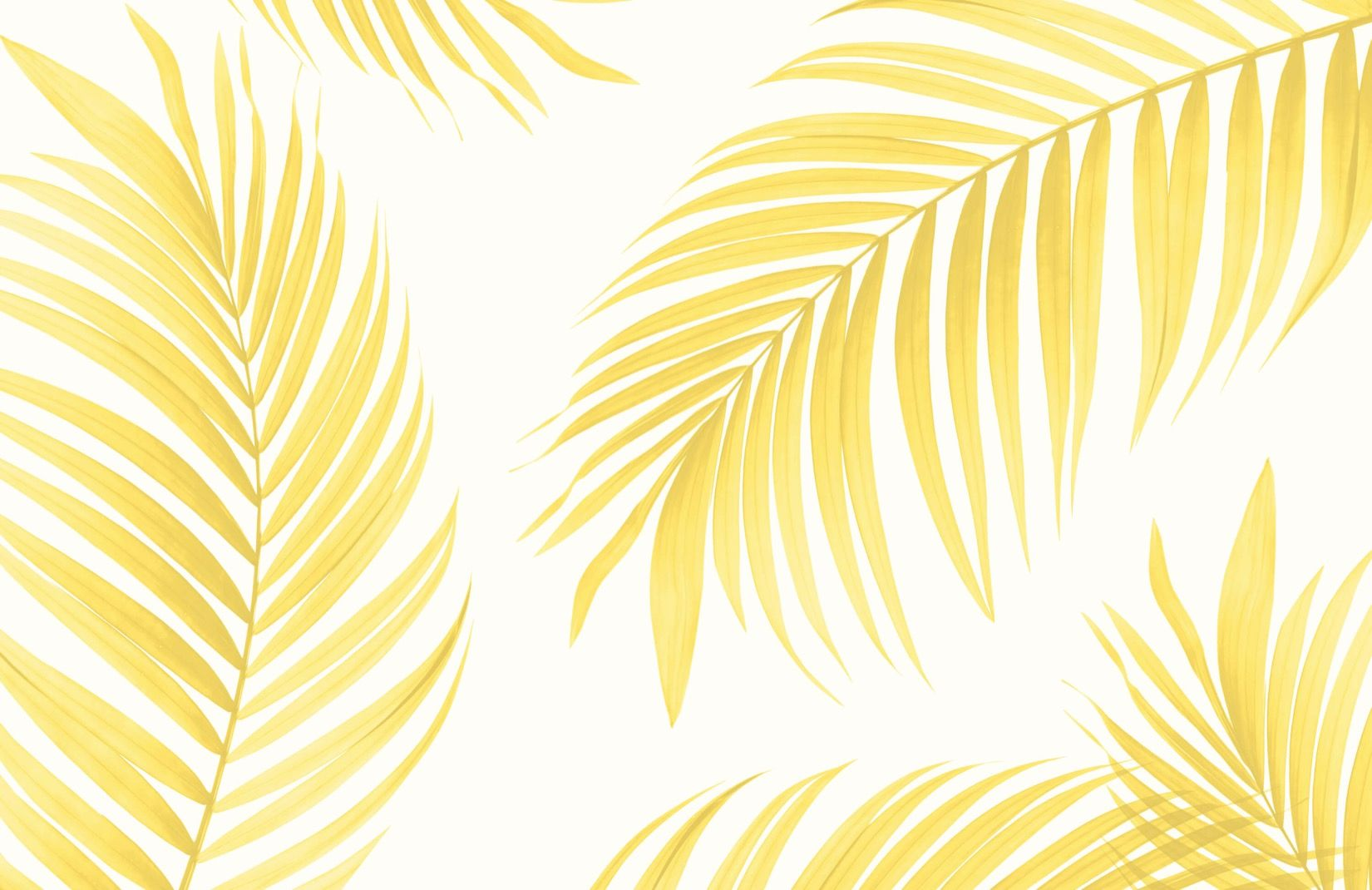 Yellow Tropical Palm Wallpaper Mural Muralswallpaper Palm Wallpaper Tropical Wallpaper Mural Wallpaper