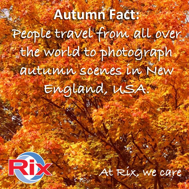 #Autumn fact