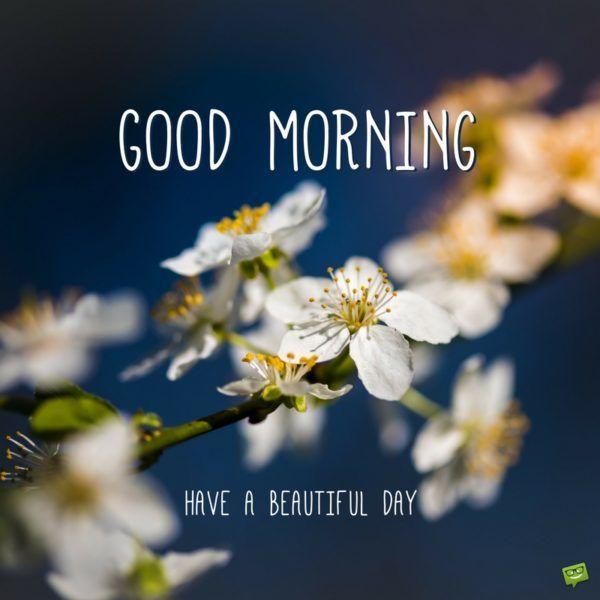 A New Day Starts Good Morning Pics Morning Pictures Good Morning Cards Good Morning