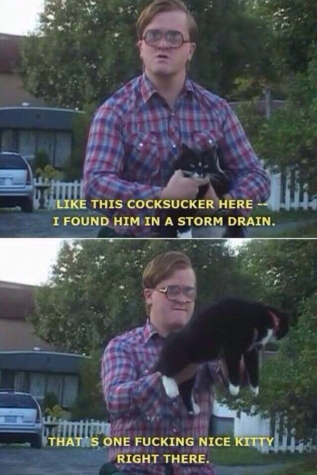 Bubbles And His Kitties With Images Bubbles Trailer Park Boys