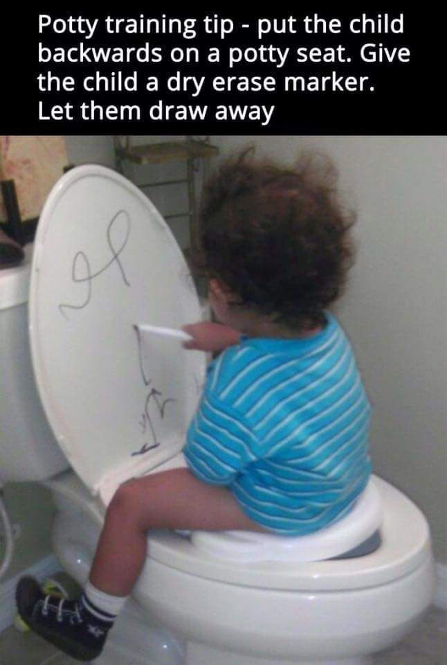 25  best potties for toddlers ideas on pinterest