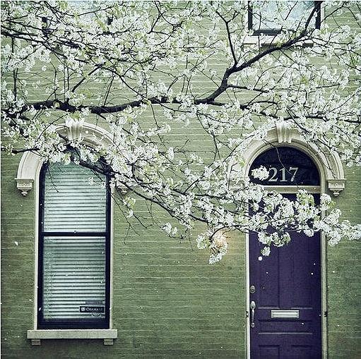 Comfortspringstation Green House Color Exterior House Paint Color Combinations Exterior Paint Colors For House