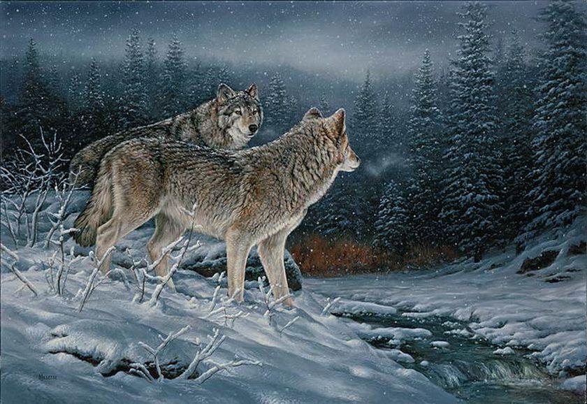 Картинки анимированные волк волки