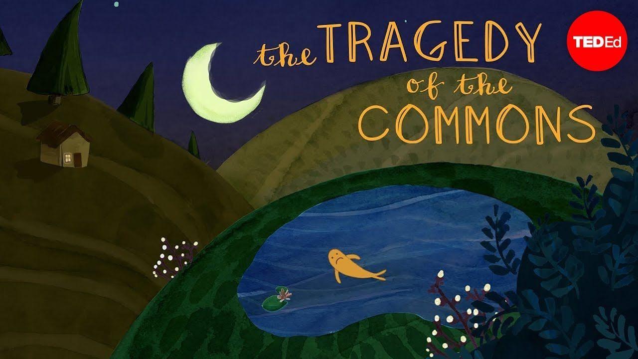 What I The Tragedy Of Common Nichola Amendolare Youtube Ap Environmental Science Essay By Garrett Hardin Question