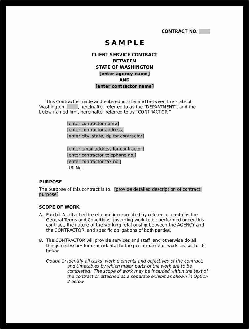 Free Service Contract Template Unique Blank Contract