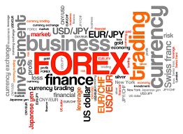 Moneysurfers: corsi di trading e business online.