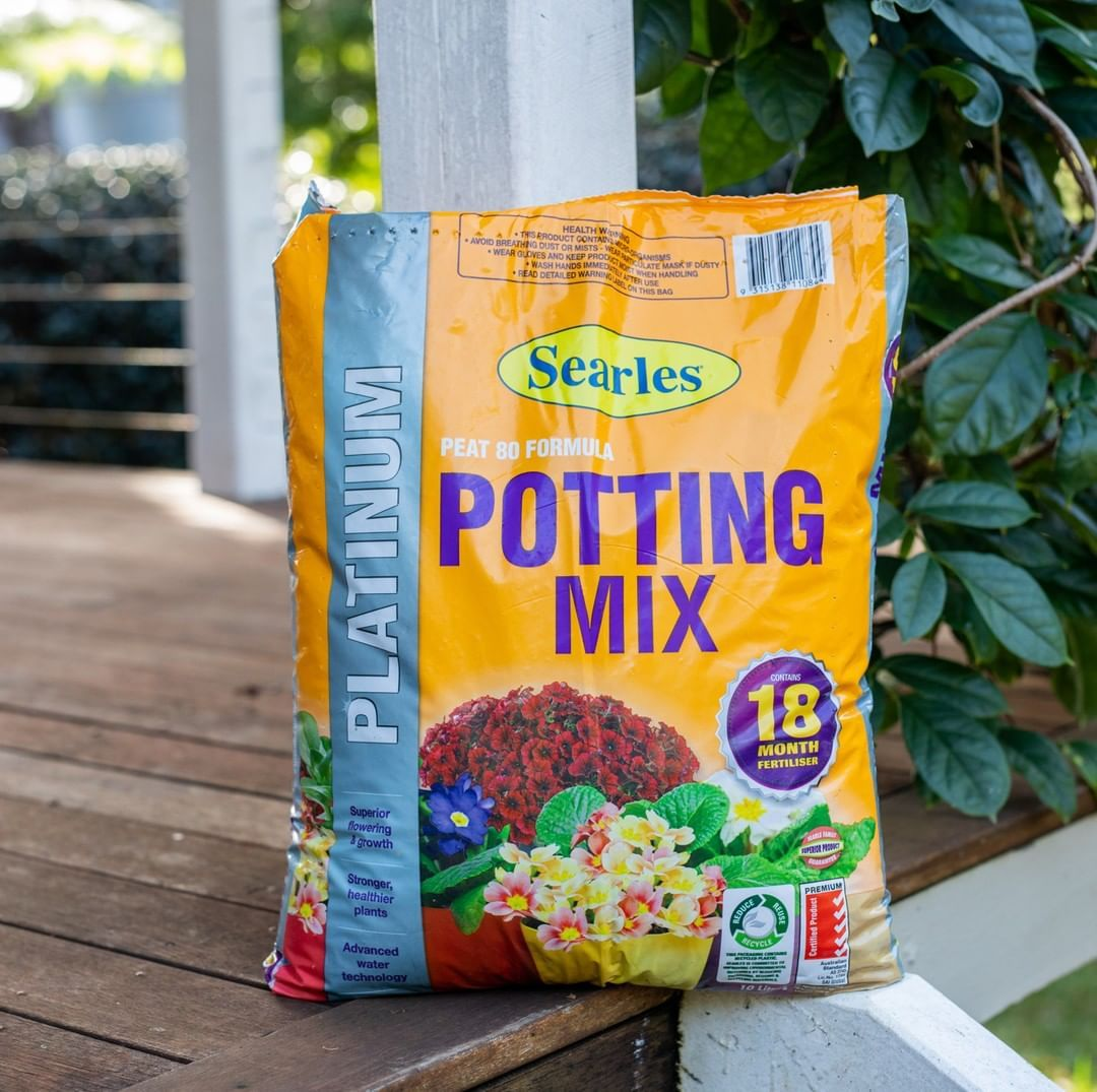 Professionally designed and formulated using only the highest grade selected ingredients and Searles advanced blending technique, our Platinum Potting Mix is the apex of potting mixtures. 🌟⠀ ⠀ 💧 It has excellent water holding capacity.⠀ 🌱 With ideal aeration and drainage properties. ⠀ 🌿 And, all essential nutrients and m