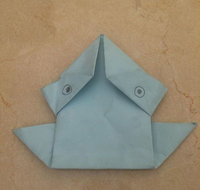Photo of My Origami frog