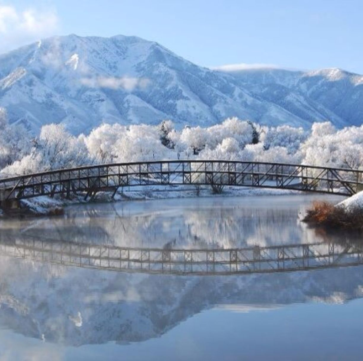 Best Places For Cheap Holiday: Asheville Nc Winter - Google Search