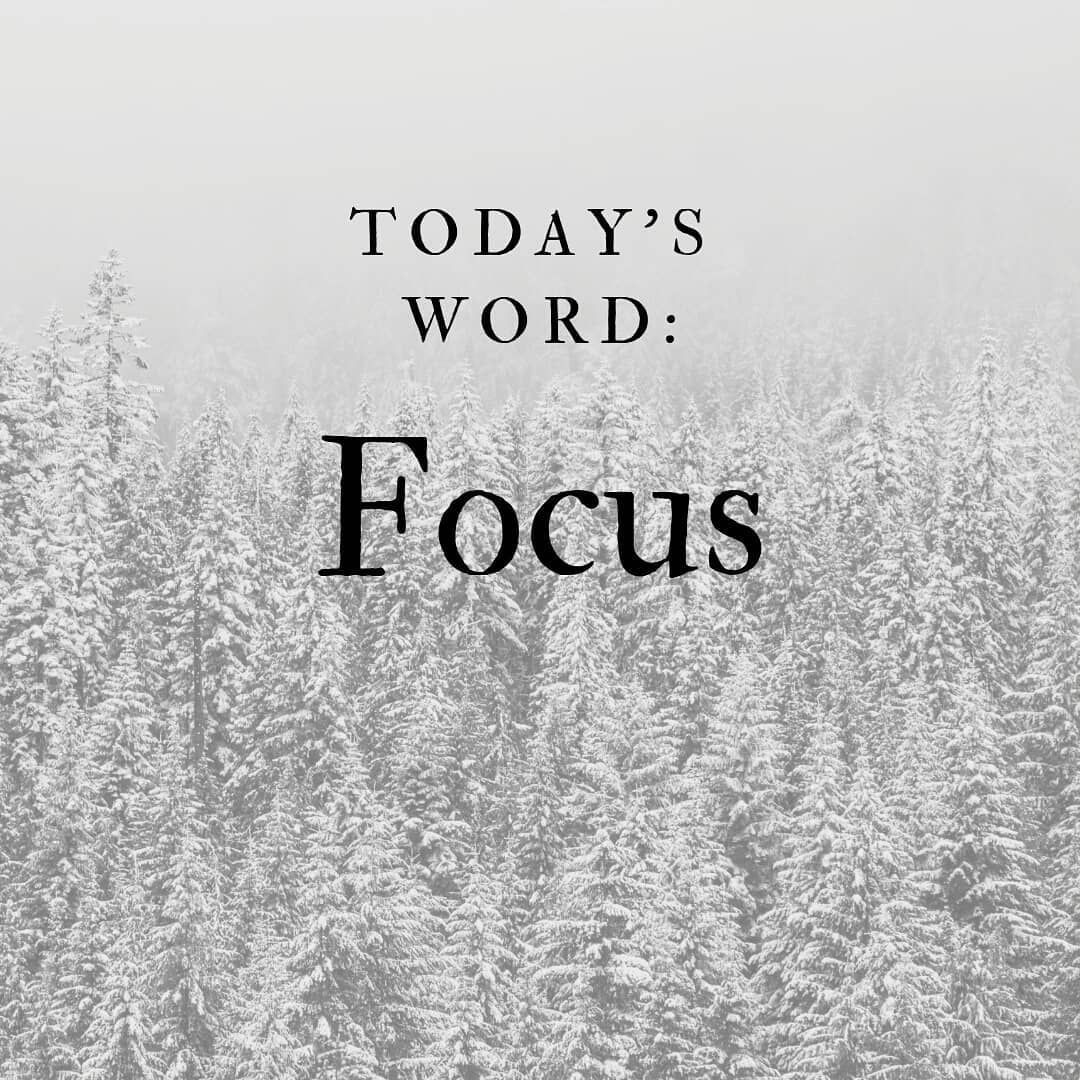 Today's word: Focus. You move in the direction of your focus. Where are you  headed? Is it where you want to go? | Words, Directions, Your head