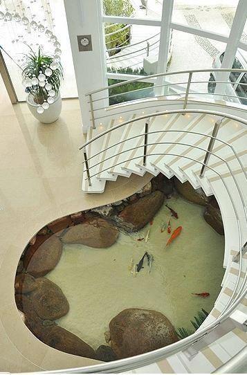 Fucking fish pond