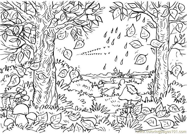 Coloring Pages For Adults Nature Colouring Doodles And Autumn Tre