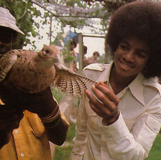 Michael and animal friend, Album cover shoot