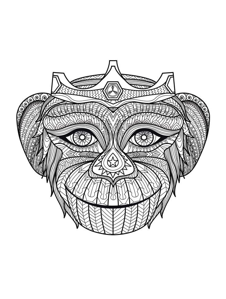 Free Coloring Page Adult Africa Monkey Head Funny But Complex