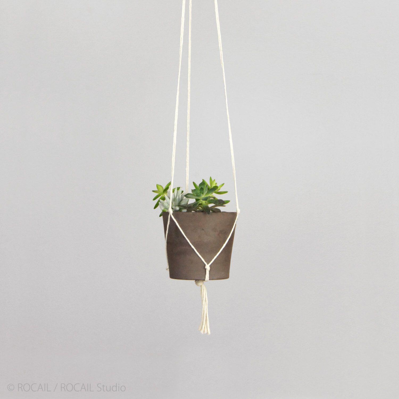 Succulent; Terracotta Pot in White Handmade Hanging Planter; Macrame Plant Hanger