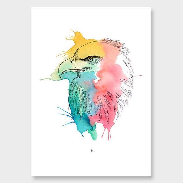 Colour Me Eagle Art Print by Makus Art - Art Prints NZ Art Prints, Design Prints, Posters & NZ Design Gifts | endemicworld