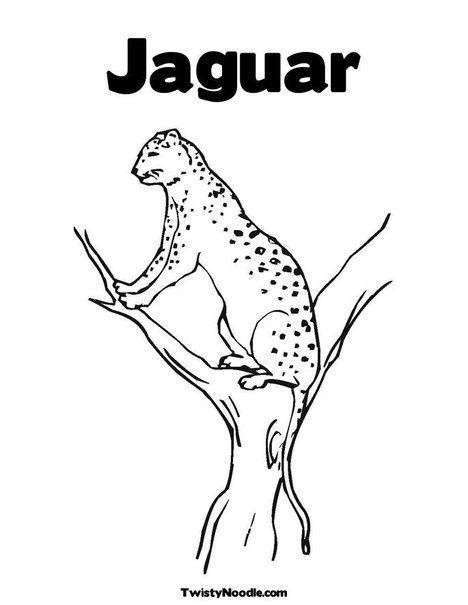 Jaguar Coloring Page From Twistynoodle Com Kids Crafts Pinterest