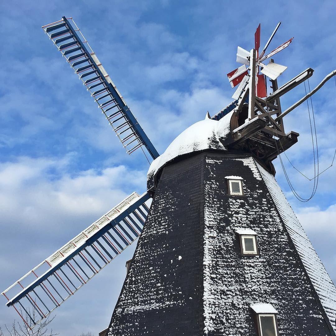 Rodelalarm an der Windmühle Paula! #windmill #steinhude #steinhudermeer #windmuehle #paula #winter