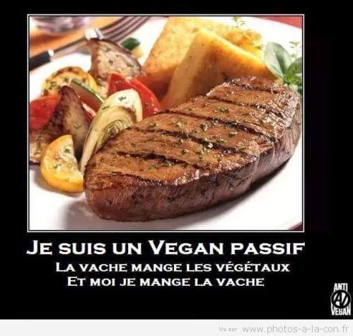 image drole vegan