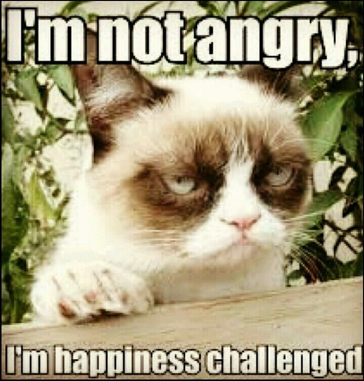 I'm Not Angry, I'm Happiness Challanged