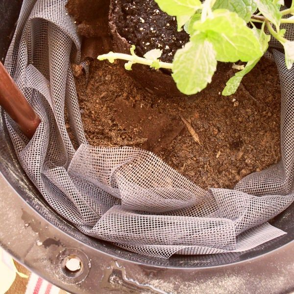 How to Make a Self Watering Container #selfwatering