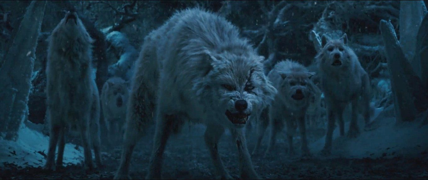 Here is a shot of the wolves from Beauty and the Beast 2017
